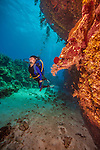 7 July 2013: SCUBA diver Sally Herschorn explores the reefs of Conch Point  off the North Shore of Grand Cayman Island.  Located in the British West Indies in the  Caribbean, the Cayman Islands are renowned for excellent scuba diving, snorkeling, beaches and banking.  Mandatory Credit: Ed Wolfstein Photo