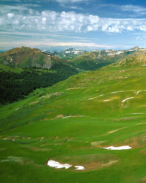 View of Schoefield Pass from West Elk Pass, Crested Butte, Colorado, USA .  John offers private wildflower tours in the Crested Butte area and throughout Colorado. Year-round.