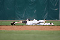 April 29, 2009: Dusty Coleman (8) of the Kane County Cougars makes a diving catch against the Lansing Lugnuts at Elfstrom Stadium in Geneva, IL.  Photo by: Chris Proctor/Four Seam Images