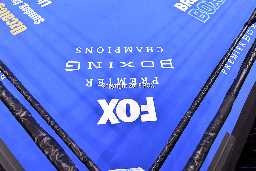 """BROOKLYN, NY - DECEMBER 22: Ring side view before the start of the Fox Sports and Premier Boxing Champions  December 22 """"PBC on Fox"""" Fight Night at the Barclays Center on December 22, 2018 in Brooklyn, New York. (Photo by Anthony Behar/Fox Sports/PictureGroup)"""
