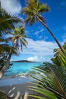 Looking out from Gibney Beach<br /> Virgin Islands National Park<br /> St. John<br /> U.S. Virgin Islands