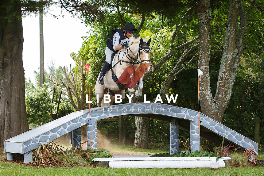 NZL-Donna Edwards-Smith (MR HOKEY POKEY) INTERIM-5TH: CIC3* CROSS COUNTRY: 2016 NZL-Kihikihi International Horse Trial (Saturday 9 April) CREDIT: Libby Law COPYRIGHT: LIBBY LAW PHOTOGRAPHY