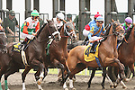 08 April 2011.  Third Race.   #6 Blowback and Victor Lebron, #5 Tetelestai and Javier Castellano, and #4 Annawon and Garrett Gomez.