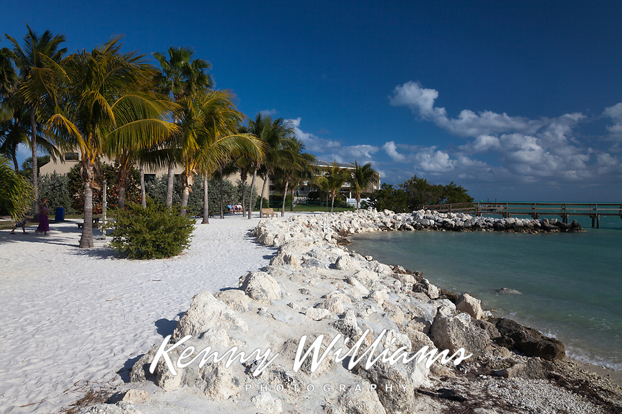 Sunset Park, Palm Trees, Marathon, Vaca Key, Florida Keys