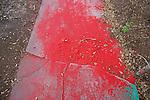 Paint Powder on Sidewalk, Wynwood