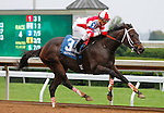 October 09 2015:   Thirteen Arrows and Kerwin Clark win the 4th race, Allowance Optional Claiming $80,000 for trainer Larry Jones, and owner Fox Hill Farm.  Candice Chavez/ESW/CSM