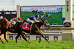 Toronto, ON - September  17:  Tepin, #8, ridden by Julien R. Leparoux runs to victory  at the Ricoh Woodbine Mile Stakes  at Woodbine Race Course on September 17, 2016 in Toronto, Ontario. (Photo by Sophia Shore/Eclipse Sportswire/Getty Images)