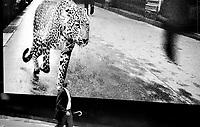 04.2003<br /> <br /> Man walking under a big picture hidding the construction site of the famous trade mark cartier in champs élysées.<br /> <br /> Homme marchant sous une grande photo cachant le chantier de la fameuse marque cartier sur les champs élysées.