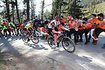 Tadej Pogacar (SLO) UAE Team Emirates leads race leader Primoz Roglic (SLO) Team Jumbo-Visma up Ermualde during Stage 3 of the Itzulia Basque Country 2021, running 167.7km from Amurrio to Laudi/Ermualde, Spain. 7th April 2021.  <br /> Picture: Luis Angel Gomez/Photogomezsport | Cyclefile<br /> <br /> All photos usage must carry mandatory copyright credit (© Cyclefile | Luis Angel Gomez/Photogomezsport)