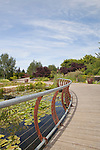 Boardwalk over water garden at Oregon Gardens.  Oregon Gardens, Silverton, Oregon, USA, an 80 acre botanical garden in the Willamette Valley.  Windy day.. This image available for license through exclusive agency.  Please contact the photographer