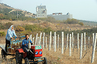 A farmer drives a tractor with his wife on the trailer in front of a Scottish Castle on the site of Treaty Port Vineyards which is run by British milllionaire Chris Ruffle in Penglai, Shandong province, China.<br /> 06 Nov 2010