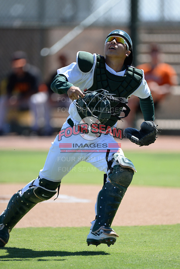 Oakland Athletics catcher Iolana Akau (33) looks for a pop up foul ball during an instructional league game against the San Francisco Giants on September 27, 2013 at Papago Park Baseball Complex in Phoenix, Arizona.  (Mike Janes/Four Seam Images)