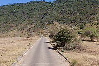 Tanzania. Ngorongoro.  One-way Road out of the Caldera.