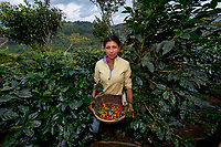 Guadalupe, Coffee Farmer, Matagalpa, Nicaragua, 2012<br /> Coffee is one of the world's most highly-traded commodities, and since it came to Nicaragua in the mid-1800s, it has played a significant role in the country's economy and environment. Due to their strained economic conditions, women are more likely to be hired to work on the country's 40,000 coffee plantations, as they are willing to accept lower wages than men. In Nicaragua, women undertake 70 percent of the work in the industry yet own just 23 percent of the land, facilities, and products.