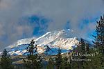 Mount Shasta, Shastina, Shasta-Trinity National Forest, California