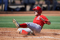 Los Angeles Angels of Anaheim Jared Walsh (31) slides into home during an Instructional League game against the Colorado Rockies on October 6, 2016 at the Tempe Diablo Stadium Complex in Tempe, Arizona.  (Mike Janes/Four Seam Images)
