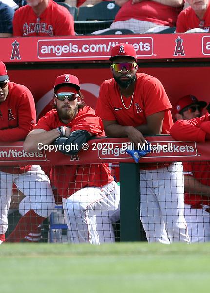 Brandon Marsh (left), Jo Adell (right) - Los Angeles Angels 2020 spring training (Bill Mitchell)