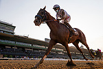 September 26, 2020: Improbable with Drayden Van Dyke wins the Awesome Again Stakes at Santa Anita Park, in Arcadia, California on September 26, 2020.  Evers/Eclipse Sportswire/CSM