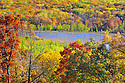 00440-010.20 Fall Color: Mix of mostly oak, aspen and birch are in peak of color.  Small lake in background. Mix of wildlife habitat. Brilliant, colorful.