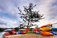 Kayaks in Wickford
