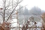 Europa, DEU, Deutschland, Bayern, Mittelschwaben, Elchingen, Altgewaesser der Donau bei Elchingen, Naturschutzgebiet, Typische Landschaft, Dunst, Natur, Umwelt, Landschaft, Jahreszeiten, Stimmungen, Landschaftsfotografie, Landschaften, Landschaftsphoto, Landschaftsphotographie, Wetter, Wetterelemente, Wetterlage, Wetterkunde, Witterung, Witterungsbedingungen, Wettererscheinungen, Meteorologie, Wettervorhersage, <br /> <br /> [Fuer die Nutzung gelten die jeweils gueltigen Allgemeinen Liefer-und Geschaeftsbedingungen. Nutzung nur gegen Verwendungsmeldung und Nachweis. Download der AGB unter http://www.image-box.com oder werden auf Anfrage zugesendet. Freigabe ist vorher erforderlich. Jede Nutzung des Fotos ist honorarpflichtig gemaess derzeit gueltiger MFM Liste - Kontakt, Uwe Schmid-Fotografie, Duisburg, Tel. (+49).2065.677997, ..archiv@image-box.com, www.image-box.com]