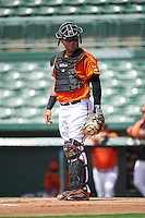 GCL Orioles catcher Ronald Soto (31) during a game against the GCL Red Sox on August 16, 2016 at the Ed Smith Stadium in Sarasota, Florida.  GCL Red Sox defeated GCL Orioles 2-0.  (Mike Janes/Four Seam Images)