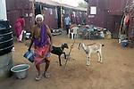 A Shelter in Nagapattinam.India.