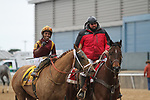 HOT SPRINGS, AR - March 11: Whitmore #4, ridden by Ricardo Santana, Jr., returns to the winners' circle after winning the Hot Springs Stakes at Oaklawn Park on March 11, 2017 in Hot Springs, AR. (Photo by Ciara Bowen/Eclipse Sportswire/Getty Images)