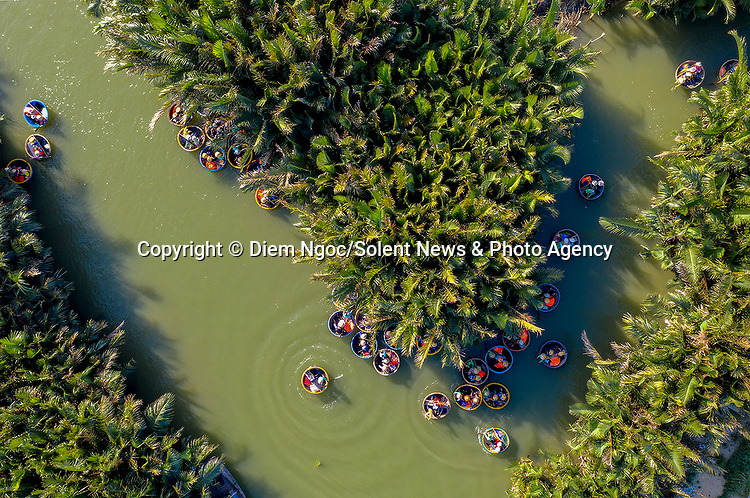 """Pictured: Circular boats make their way through a coconut forest.   Tourists bundle into the bamboo baskets before exploring the 100-hectare forest with a guide, gliding through the channels of water and becoming surrounded by the coconut trees.<br /> <br /> Amateur photographer Diem Ngoc pictured the boats in the Bay Mau coconut forest in Hoi An, Vietnam.   The 42 year old Customs Officer, from Ho Chi Minh City, Vietnam, said: """"Travelling through the coconut forest is an amazing experience for the visitors.   SEE OUR COPY FOR DETAILS<br /> <br /> Please byline: Diem Ngoc/Solent News<br /> <br /> © Diem Ngoc/Solent News & Photo Agency<br /> UK +44 (0) 2380 458800"""