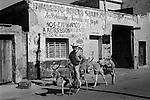 Donkey  Mexico man riding donkeys into town 1970s. Mazatlan State of Sinaloa 1973