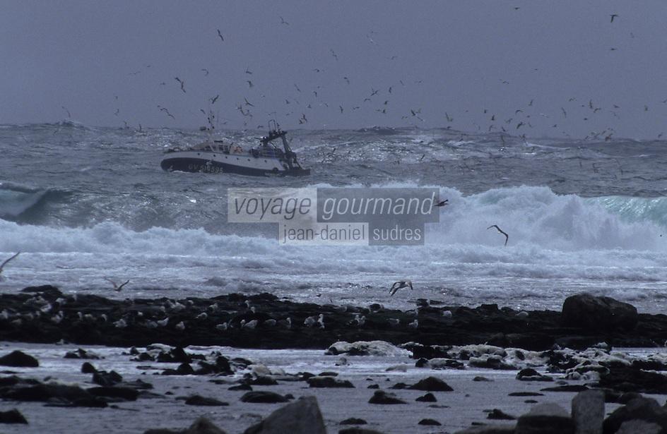 Europe/France/Bretagne/29/Finistère/Saint-Guénolé : Chalutier dans la tempête