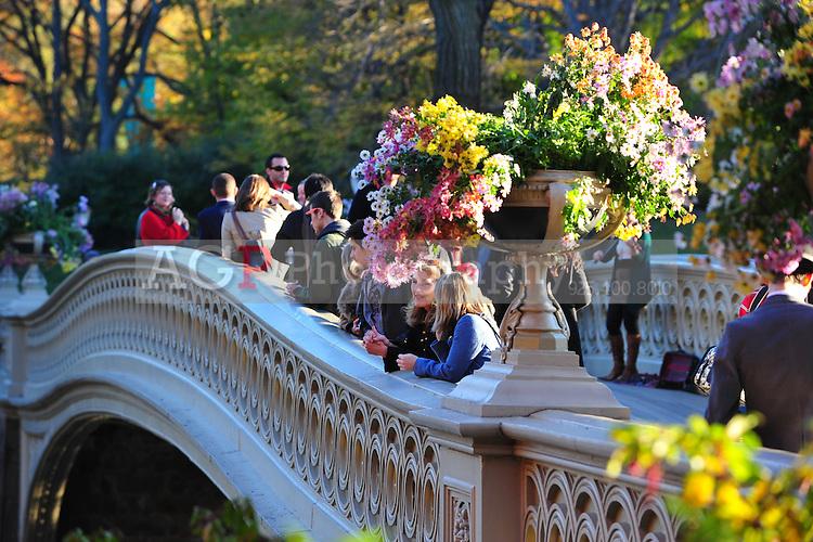 Nov. 12, 2010 - New York City, NY - Visitors enjoy a beautiful November afternoon on the Bow Bridge in Central Park  in New York City November 12, 2010. (Photo by Alan Greth)