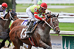 NEW ORLEANS, LA - MARCH 26: Classy Bird #13 ridden by Francisco C. Torres wins the Crescent City Derby at Fairgrounds Race Course on March 26, 2016 in New Orleans, Louisiana. (Photo by Steve Dalmado/Eclipse Sportswire/Getty Images)