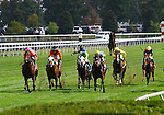 Havelock and Garrett Gomez win the Woodford  Presented by Keeneland Select.   October 05, 2013.
