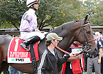 Ron the Greek, ridden by Jose Lezcano, runs in the TVG Jockey Club Gold Cup Invitational Stakes (GI) at Belmont Park in Elmont, New York on September 29, 2012.  (Bob Mayberger/Eclipse Sportswire)