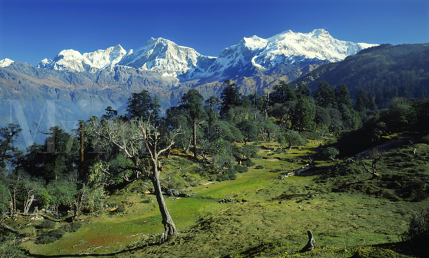.The Manaslu Himal range in west-central Nepal. Manaslu, a peak over 8000m, is the sharp yellow summit in the far distance at centre-left. Nepal Himalaya...