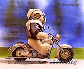 Xavier, CUTE ANIMALS, teddies, photos, SPCHTEDDIES52,#ac#