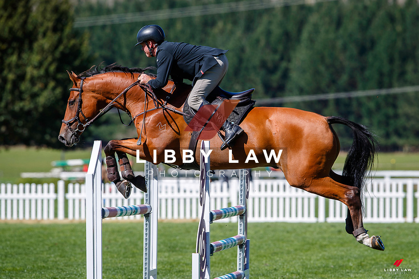 NZL-Jeremy Clark rides Dynavyte Ipso Facto. Class 25: Horse 1.10m Ranking Class. 2021 NZL-Easter Jumping Festival presented by McIntosh Global Equestrian and Equestrian Entries. NEC Taupo. Saturday 3 April. Copyright Photo: Libby Law Photography