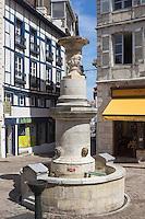 France, Aquitaine, Pyrénées-Atlantiques, Pays Basque, Bayonne: Vieilles demeures et fontaine Place Pasteur // France, Pyrenees Atlantiques, Basque  Country, Bayonne:  Old mansions and Fountain Place Pasteur