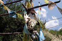 A yak skull hangs outside a Tibetan home in the Jiuzhaigou National Park. Sichuan Province. China.