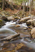 Cockermouth River in Groton, New Hampshire during the spring months.