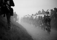 Paris-Roubaix 2012 ..dusty chain gang