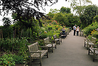 Pictured: View of the gardens. Friday 07 July 2017<br /> Re: Botanical Gardens in Singleton Park, Swansea, Wales, UK.