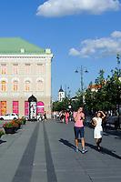 Auf dem Gedimino-Prospekt in Vilnius, Litauen, Europa, Unesco-Weltkulturerbe