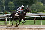 August 29, 2020: Yaupon #2, ridden by Joel Rosario, trained by  Steven M. Asmussen  wins the The Amsterdam grII at Saratoga Race Course in Saratoga Springs, New York. Rob Simmons/CSM