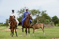 CHAD, Guéra, Bitkine, village Korbo, ethnic group Hadjarai or Hadjerai, men riding with horse home / TSCHAD , Guéra, Bitkine, Dorf Korbo der Volksgruppe Hadjarai o. Hadjerai, Maenner mit Pferden auf dem Heimritt