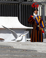 Un gabbiano cammina sul sagrato della Basilica di San Pietro durante l'udienza generale del mercoledi',  Citta' del Vaticano, 22 marzo, 2017.<br /> A seagull walks on the Saint Peter Basilica churchyard during the weekly general audience at the Vatican, on March 29, 2017.<br /> UPDATE IMAGES PRESS/Isabella Bonotto<br /> <br /> STRICTLY ONLY FOR EDITORIAL USE