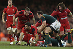 Wales v South Africa 1113