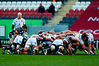 21st November 2020; Welford Road Stadium, Leicester, Midlands, England; Premiership Rugby, Leicester Tigers versus Gloucester Rugby; Richard Wigglesworth of Leicester Tigers prepares to put the ball in at a scrum