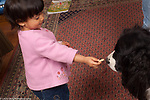 16 month old toddler girl feeding family pet dog a treat, encouraging him